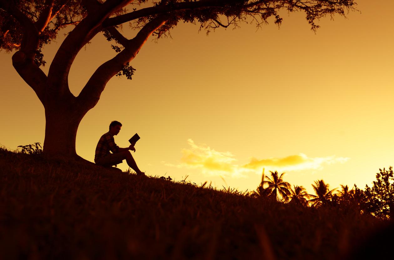 Trailhead Counseling - Navigate